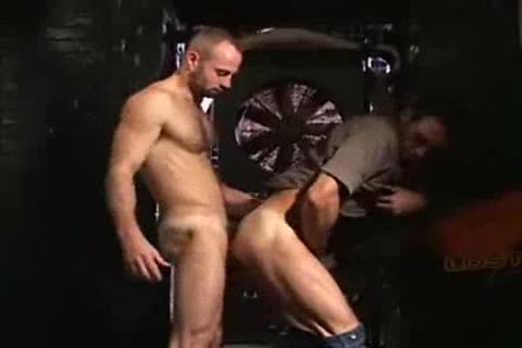 lusty Muscle Sex