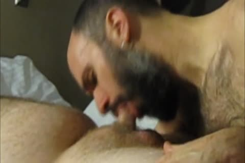 sucking Off Super smutty Straight 21yo Bear Cub