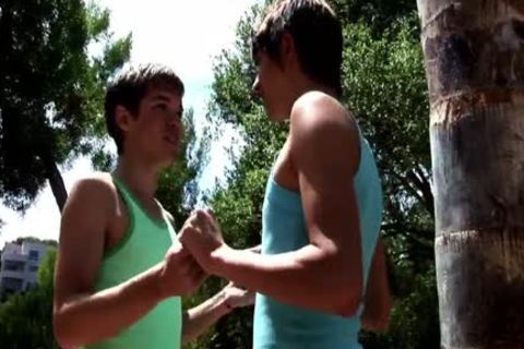 those Two homosexual males have a pleasure A Hard Sodomy Session