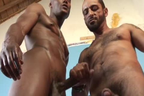 Tom Colt Has plenty of pleasure With Bill lengthy