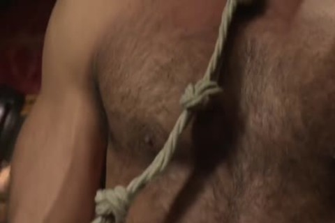 Muscle-tied Hunk tied Up And Teased