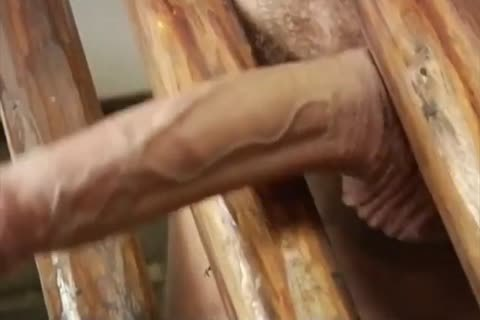 homosexual naughty Porn rough Rollers