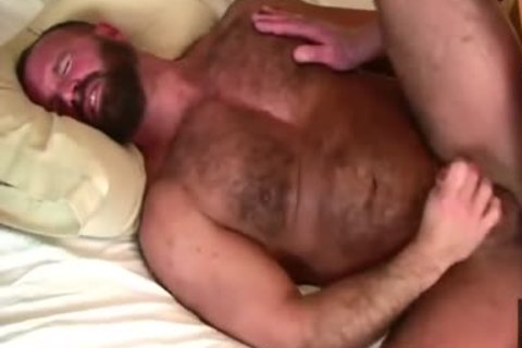 Daddy Bears nail In sofa