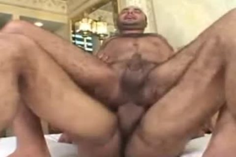 Bald Arabian Bear Takes large penis In hairy arse