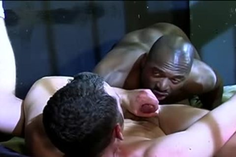 gay Interracial Prison Sex