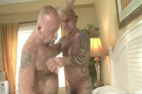 hairy Daddies pound In homo Resort