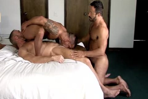 David Benjamin,   Dallas Steele  & Vinnie Stefano