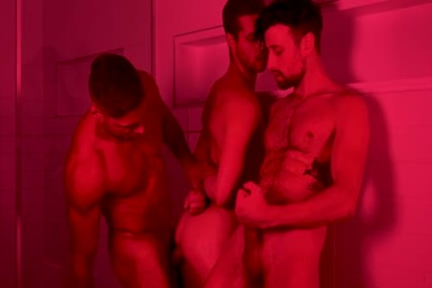 fine gay 3some